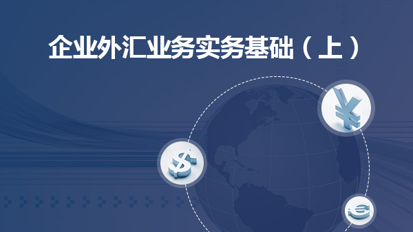 企业外汇业务实务基础(上)