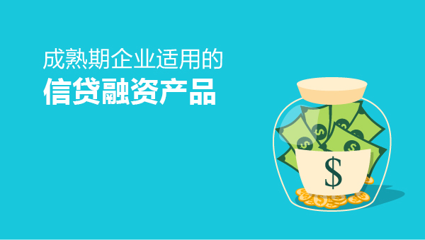 成熟期企业适用的贷款产品