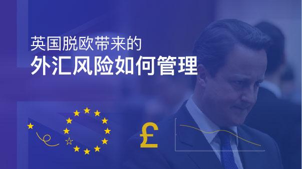 英国脱欧带来的外汇风险如何管理
