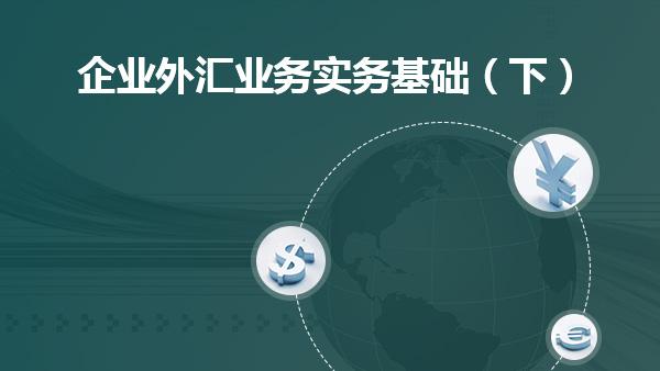 企业外汇业务实务基础(下)