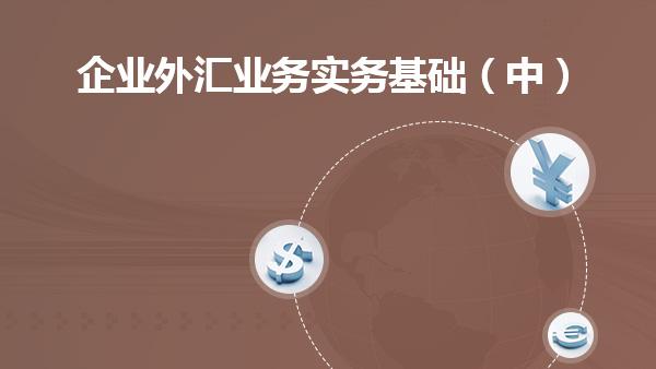 企业外汇业务实务基础(中)