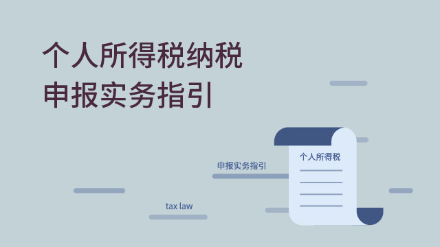 个人所得税纳税申报实务指引