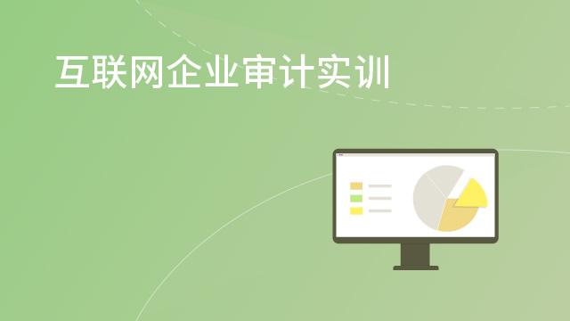 互联网企业审计实训