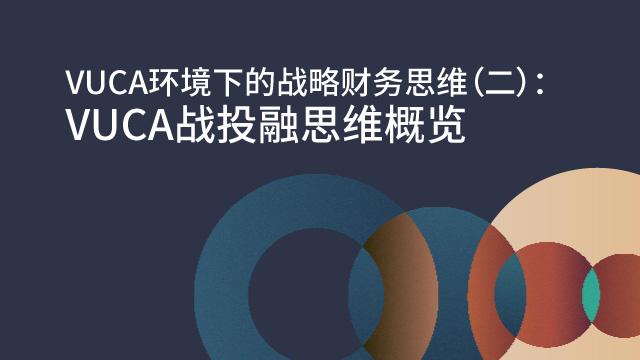 VUCA环境下的战略财务思维(二):VUCA战投融思维概览